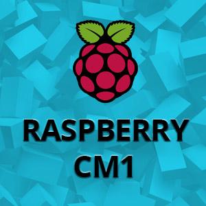 Raspberry CM 1